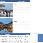 Criar catálogo de imagens no Excel – VBA